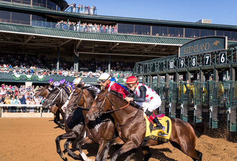 Start of the Caliborne Breeder's Futurity at Keeneland 10.05.19