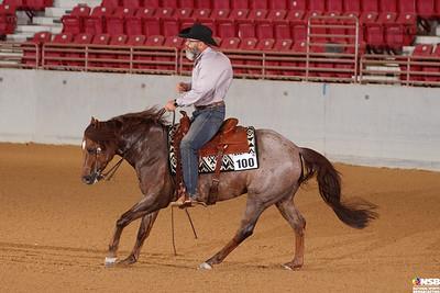Wednesday Novice Horse Set 9 64-71