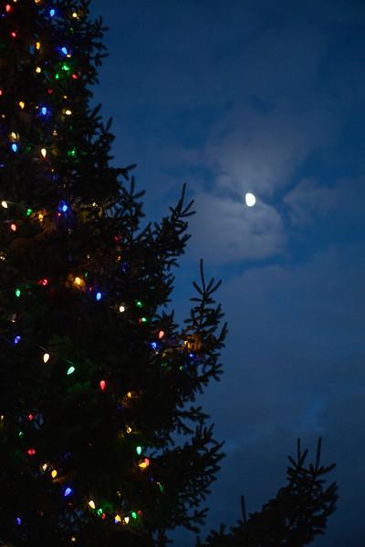 AVS_ChristmasTreeLighting-59.jpg