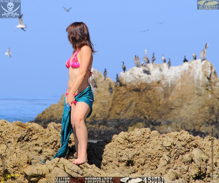 rock_climbing_malibu_swimsuit 1393.00088