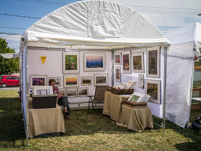 Art Festivals and Exhibitions