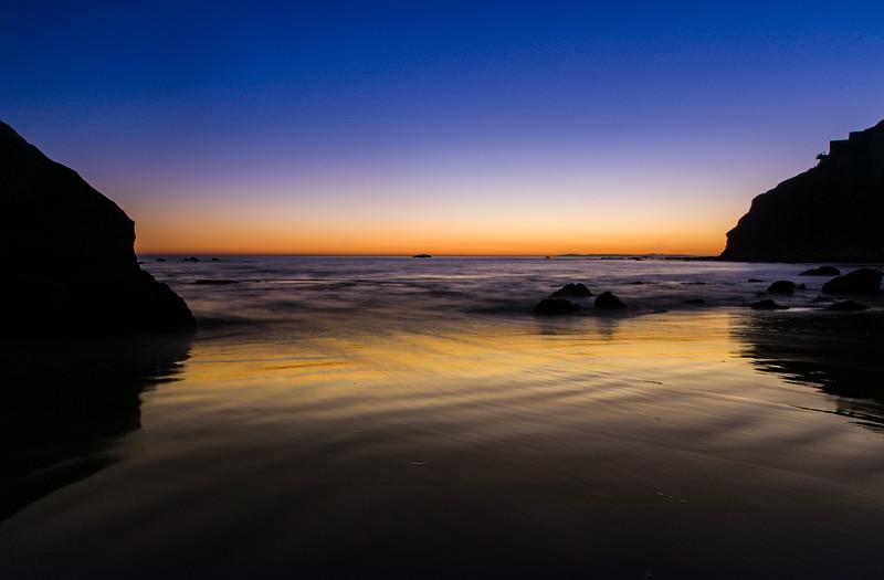 Coastal_Tribolet-56.jpg