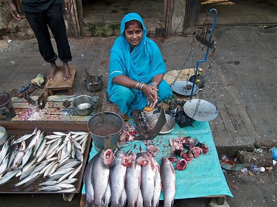 FISH MARKETS / 268 Photos