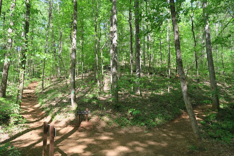 Table Rock-Carrick Creek Trail Junction - 1,420'