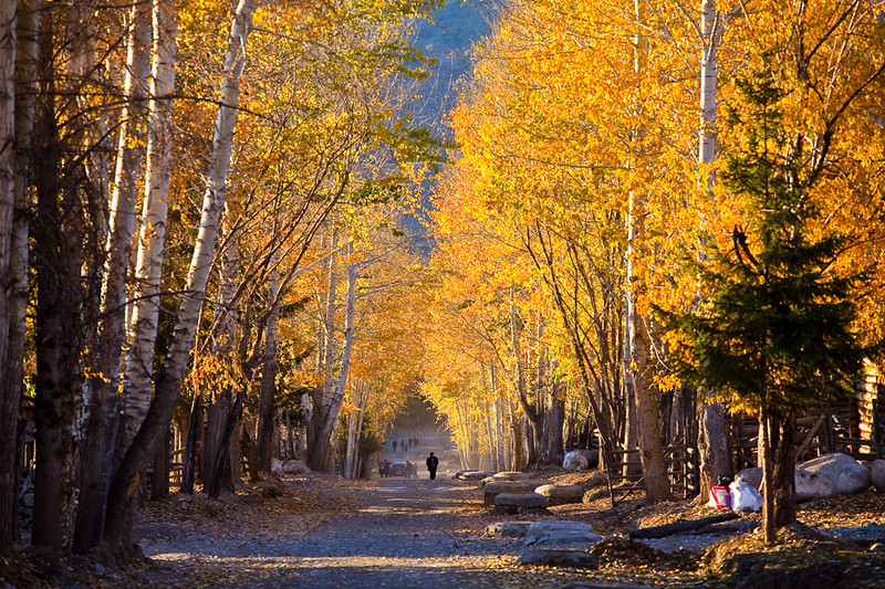 Xinjiang_20101002_187.jpg