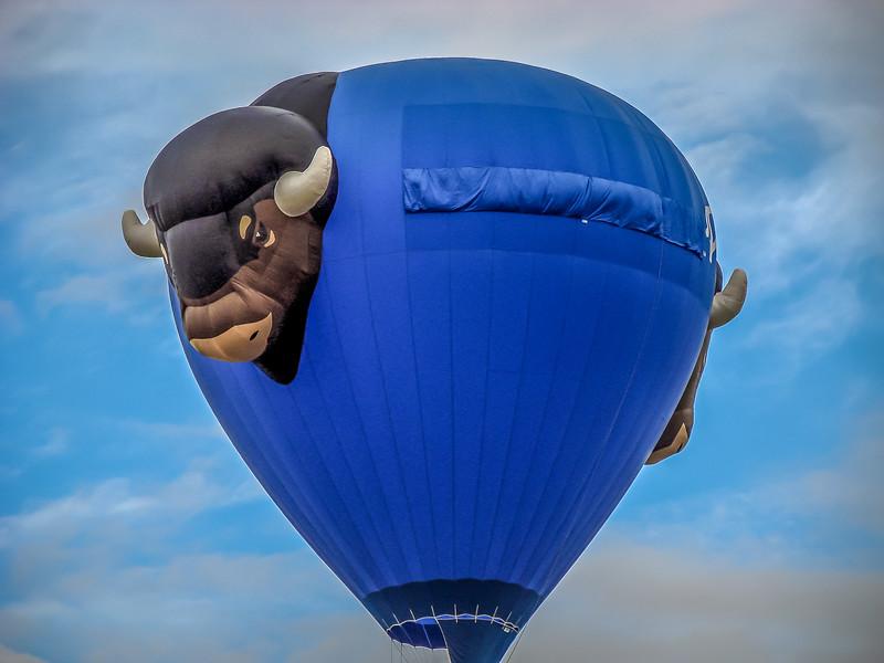 Balloon Fiesta 2006 151-15.jpg
