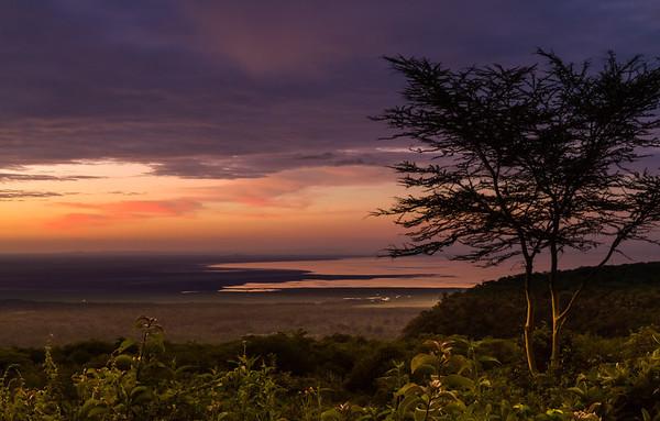 Safari-Lake Manyara