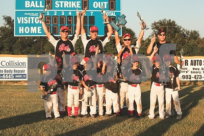 van-heat-wins-state-tball-title