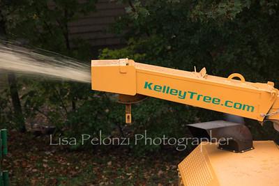 Kelly tree 5 Liberty