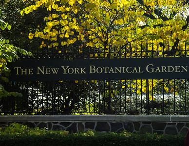 Grand Central Station to NY Botanical Garden