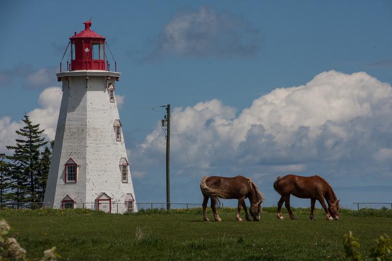 Panmure Head Lighthouse