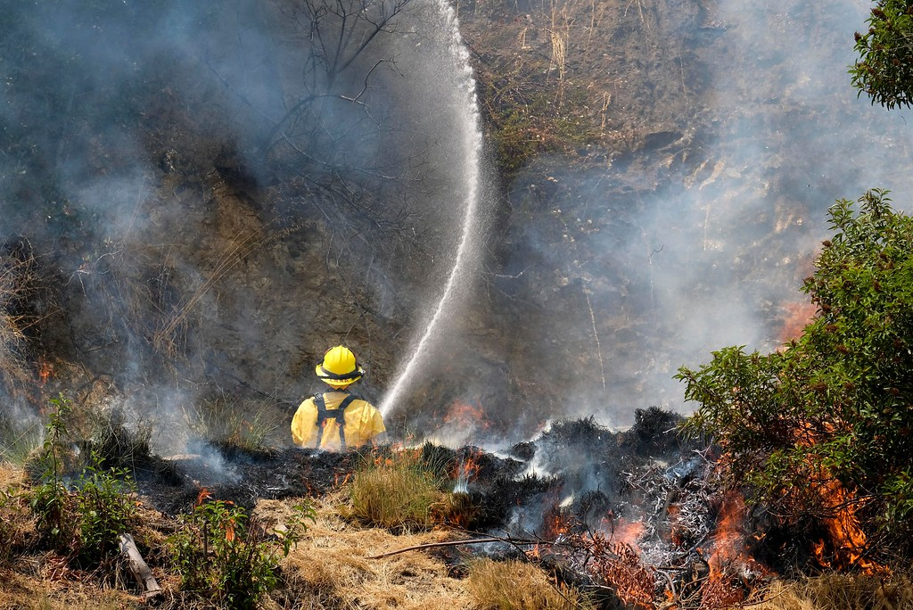. A member with California Department of Forestry and Fire Protection (Cal Fire) battles a brushfire on the hillside in Burbank, Calif., Saturday, Sept. 2, 2017. Several hundred firefighters worked to contain a blaze that chewed through brush-covered mountains, prompting evacuation orders for homes in Los Angeles, Burbank and Glendale. (AP Photo/Ringo H.W. Chiu).