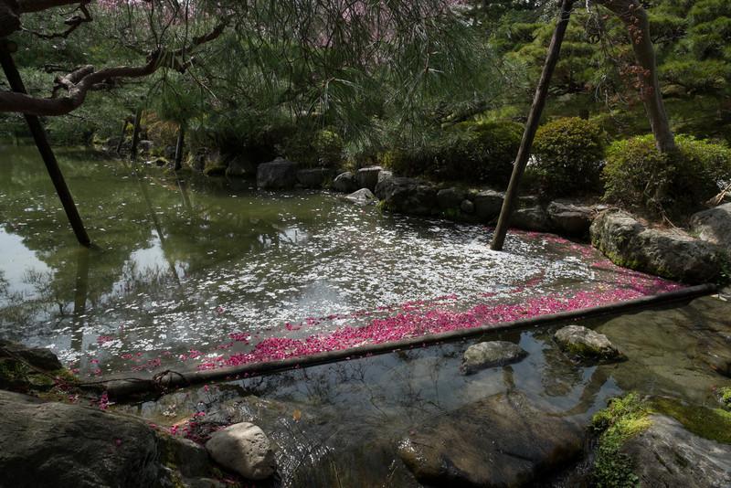 Kyoto Day 9 (105 of 317).jpg
