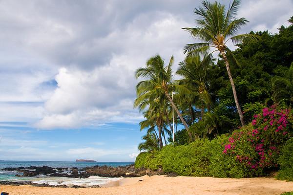 Maui Hawaii Wedding Photography for Jass 10.08.08