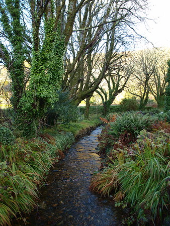 Creek in Ireland at Kylemore Abby walled garden