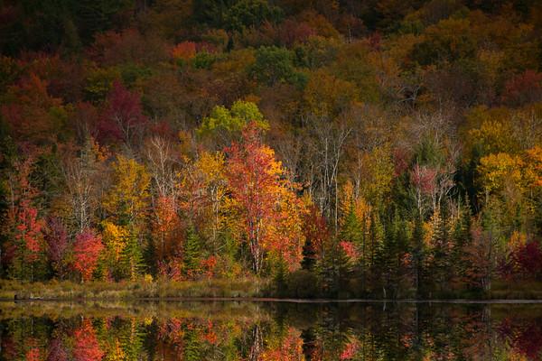 Autumn in Vermont 2015