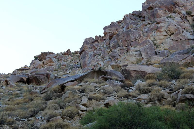 05 Cougar Canyon (159).JPG