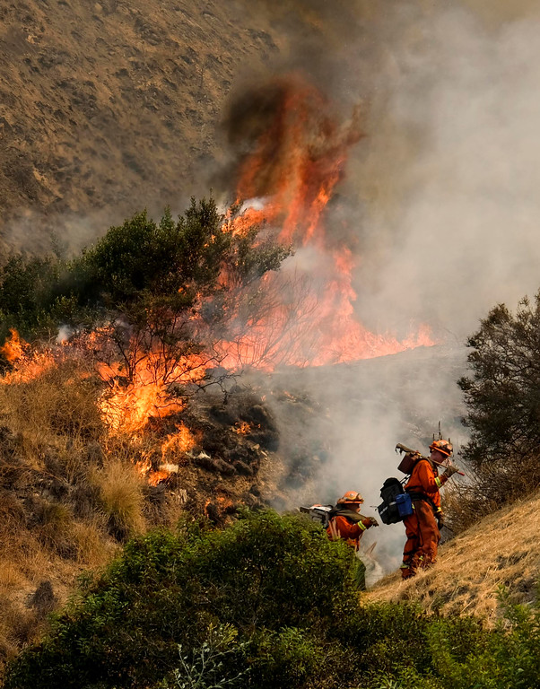 . A crew with California Department of Forestry and Fire Protection (Cal Fire) battles a brushfire on the hillside in Burbank, Calif., Saturday, Sept. 2, 2017. Several hundred firefighters worked to contain a blaze that chewed through brush-covered mountains, prompting evacuation orders for homes in Los Angeles, Burbank and Glendale.  (AP Photo/Ringo H.W. Chiu)