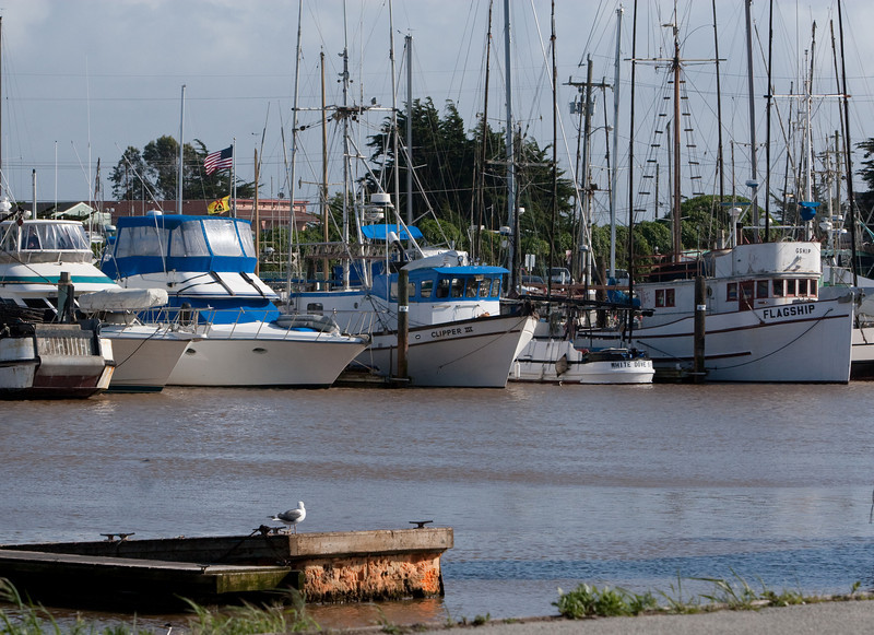 After the event in Monterey, everyone traveled to Moss Landing for a memorial luncheon.
