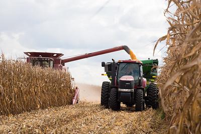 2016 Flatville Harvest