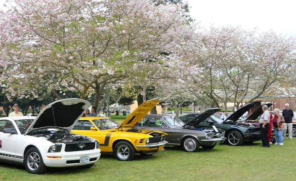 Mustang Show 2011