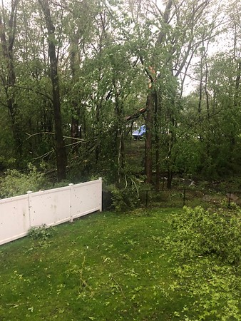 Storm May 15th  8 Candlewood Birches