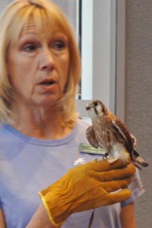 Pacific Wildlife Talk July 25