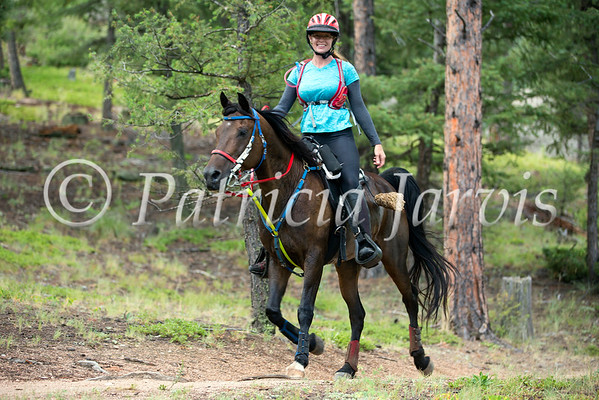 Mountain Mettle  Aug 6, 2016