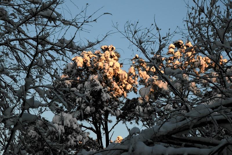 snow_o1_2018_206.jpg