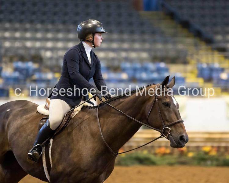 2021 Lexington National Horse Show -- Friday -- Coliseum