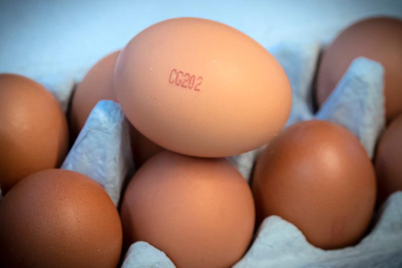 Eggs 12.jpg