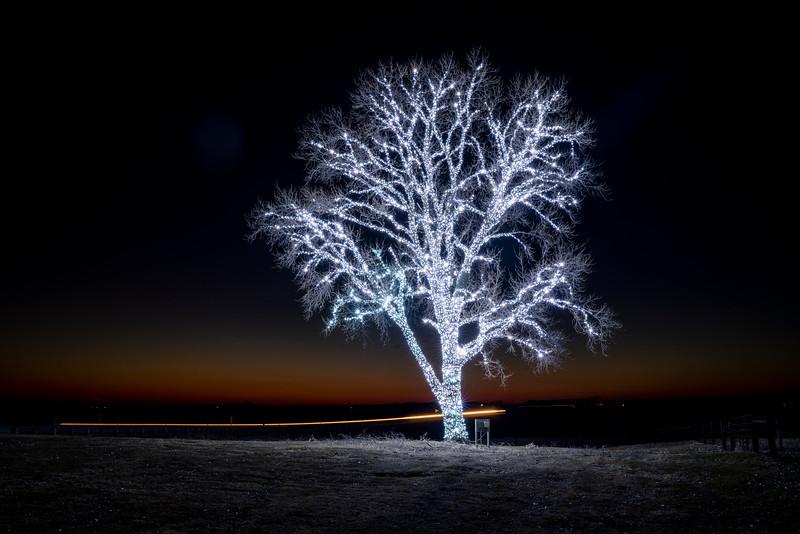 Hanlantown POET Tree