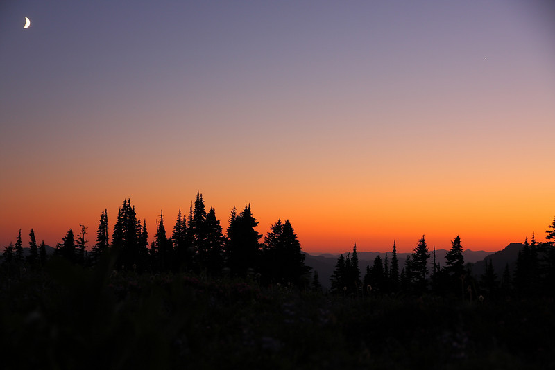 Mt. Rainier NP - Aug 201049.JPG