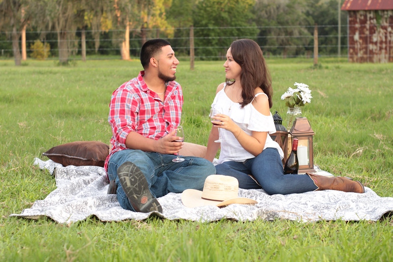 Surprise-Picnic-Engagement-Scrable-Game-Will-You-Marry-Me-Sunset-Open-Field-Rustic-Photo-Photography-By-Laina-11.jpg