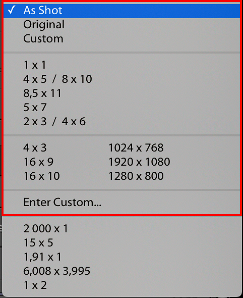 Aspect Ratio Selection List