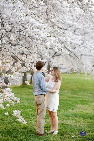 Colleen & JP | Cherry Blossom Engagement