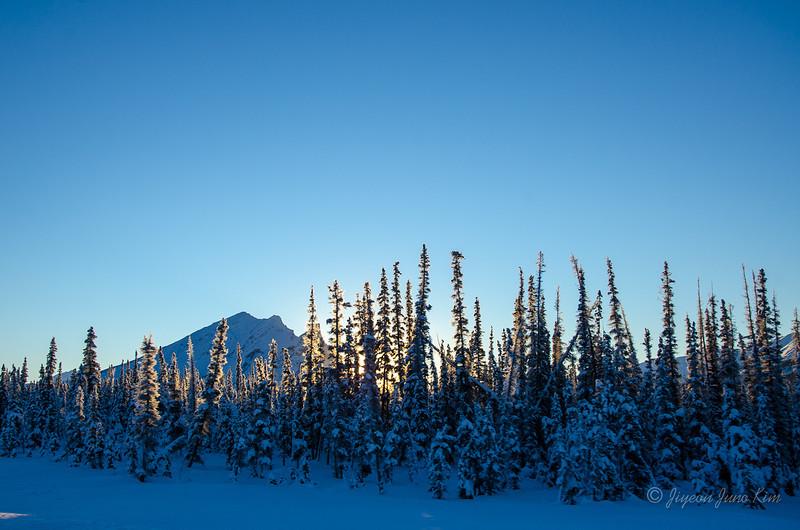 USA-Alaska-atigun pass-3133.jpg