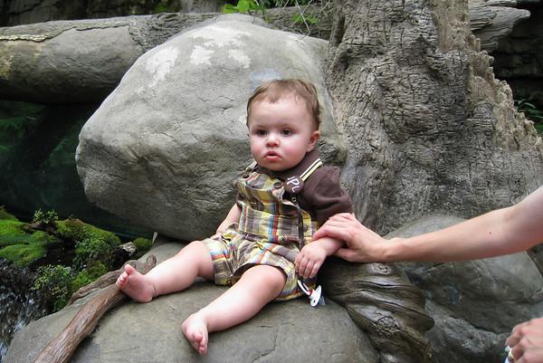 Jack's First Trip to TN Aquarium