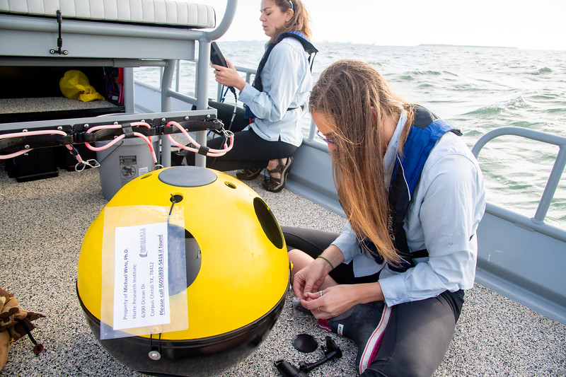 Lily Walker prepares a new device before placing it in the water.
