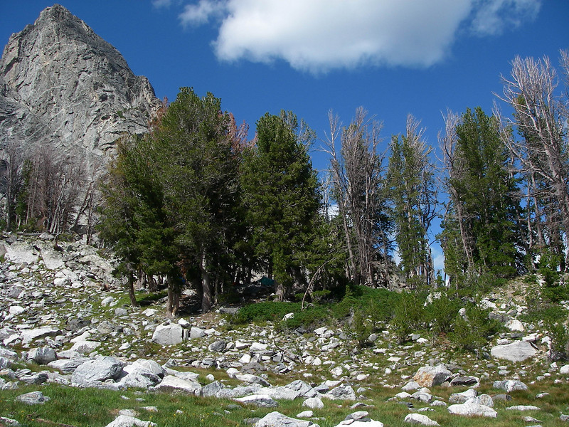 The camp site is one of the most beautiful in the Tetons.