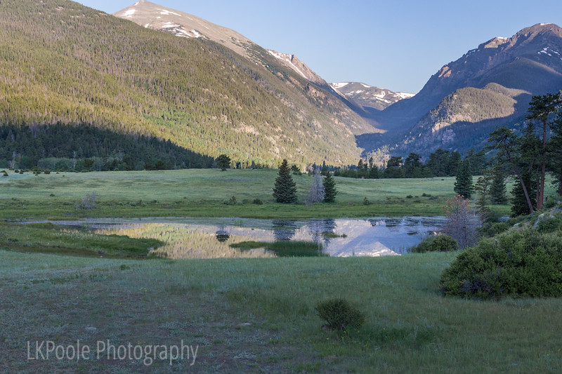 Sheep Lake Reflections