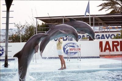 Mallorca (1983)