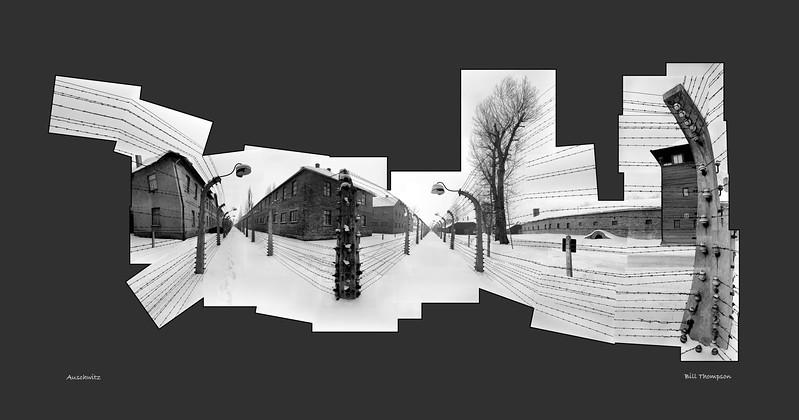 Auschwitz wireU.jpg