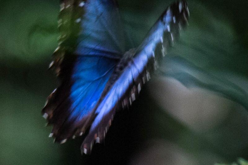 kaila_drayton_photography-1749.jpg
