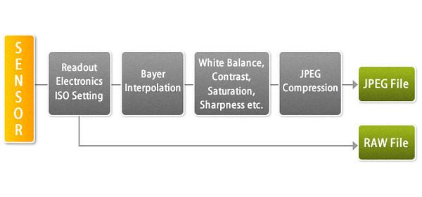 rawjpg_diagram.jpg