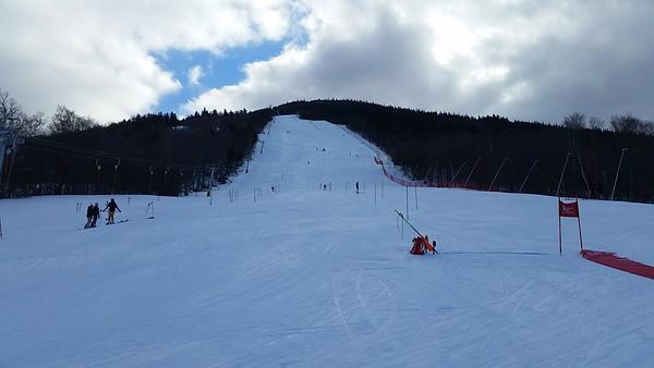 Eastern Alpine in February