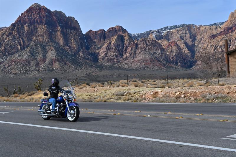 Jamie's New Harley 007.jpg