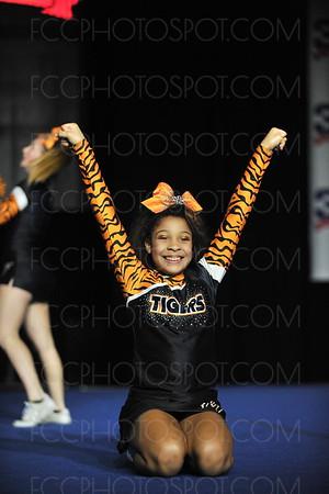Clinton Tigers Gold