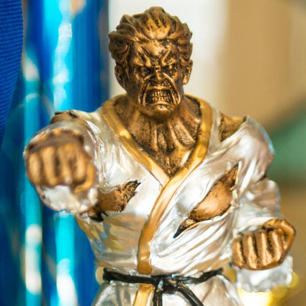 2015-09-30_AMPLIFY_Karate_2015-09-30_09-02-51__DSC6792.jpg