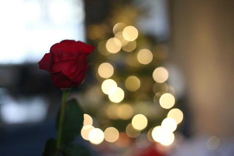 2019-12-22_ChristmasDecor-4385.JPG